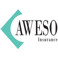 Business Expos | Brisbane | Gold Coast | Small Business Expos | Aweso Logo Feb 2018